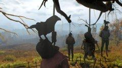 Image de The Witcher 3 : Wild Hunt