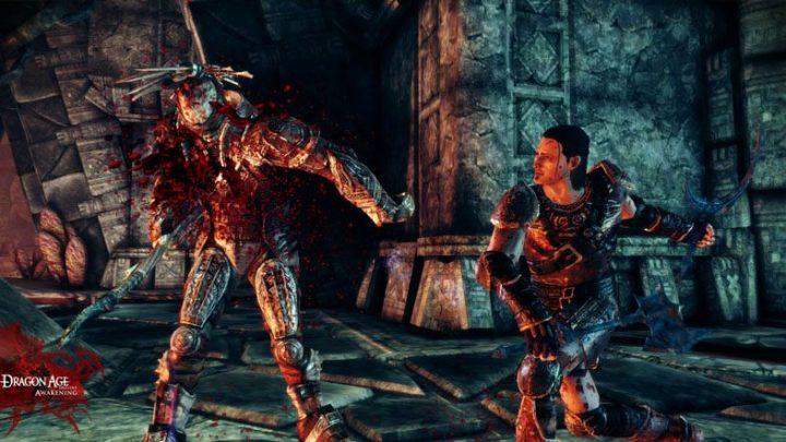 Screenshot de Dragon Age : Origins – Awakening