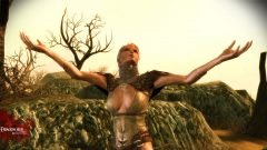 Image de Dragon Age : Origins - Awakening