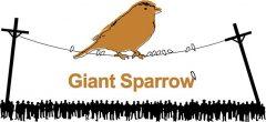 Jaquette de Giant Sparrow
