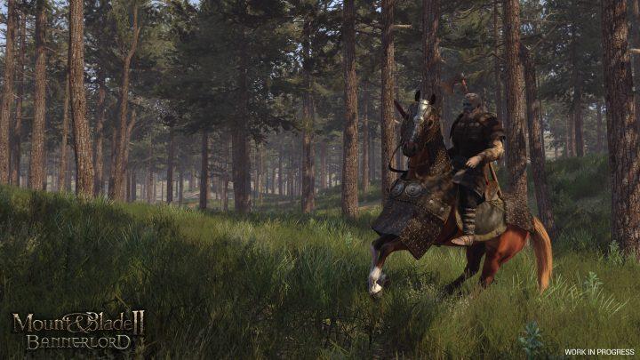 Screenshot de Mount & Blade II : Bannerlord