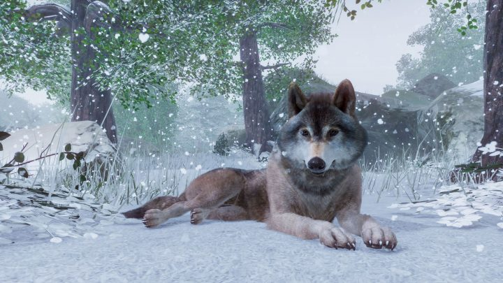 Screenshot de Planet Zoo